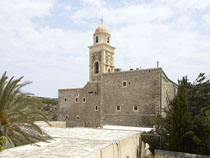 Sitia - Toplou Monastery -  the palm forest of Vai